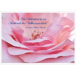 Postkarte - Rose